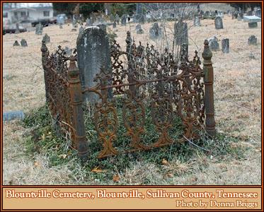 Iron Fences Grave Fences Cemetery Genealogy History